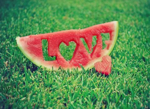 Watermeloen kweken in een hobbyserre